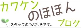カワケンのほほんブログ